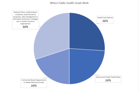 Pie chart with percentages of where graduates work.
