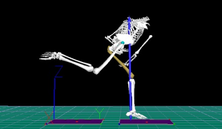 Biomechanics digital capture.