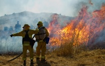 Wildland firefighters fighting grass fire.