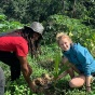 Student and Jamaican native planting a native tree.